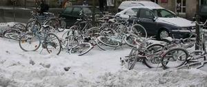 bikes2w.jpg