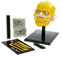 facialreconstructionkit.jpg