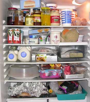 fridge2w.jpg