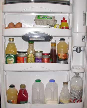 fridgew.jpg