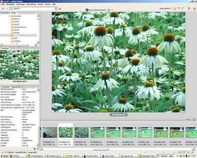 screenshw.jpg